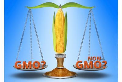 GMO? Or Non-GMO? That is the question!