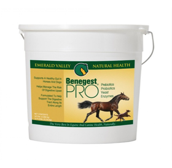 Benegest PRO Prebiotic & Probiotic, 5 LBs