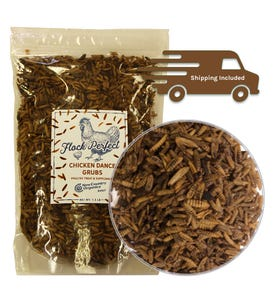 Flock Perfect Chicken Dance Grubs, 1.5 LBs