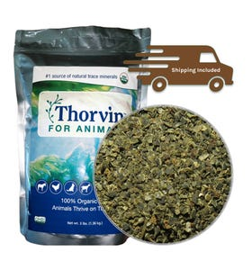 thorvin_3lb_bag_shipping_included